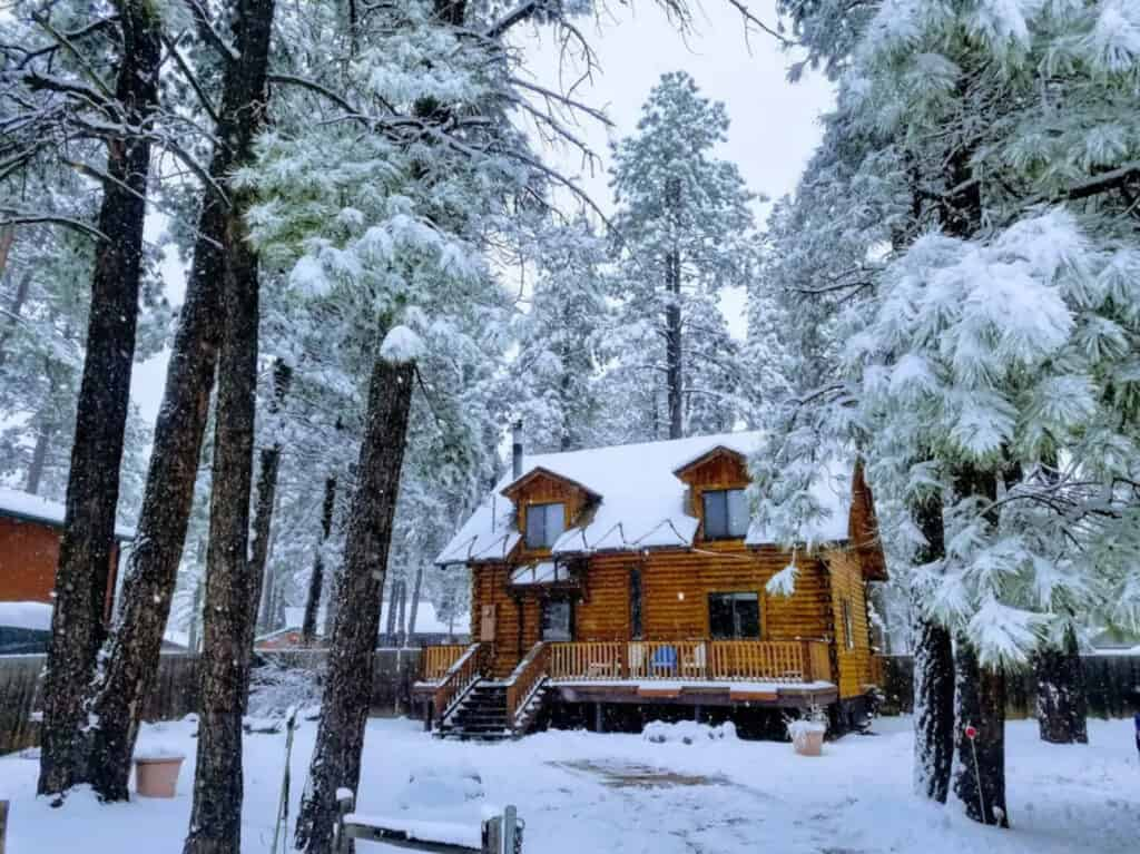 Pet Friendly Cabin in Kachina Village AZ