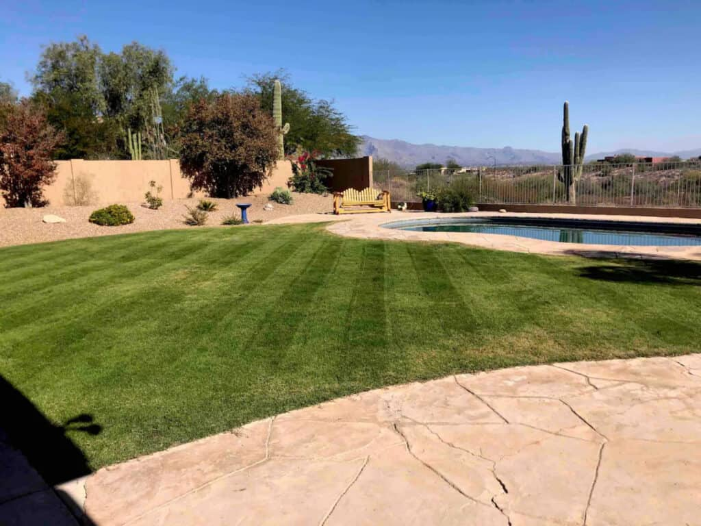 Pet Friendly Tucson Mountain Home