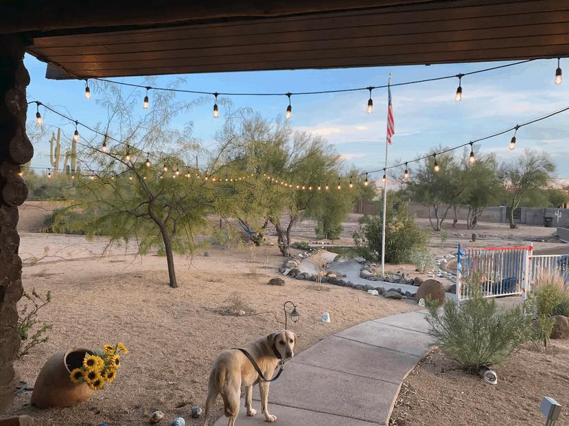 Cave Creek Dog Friendly Cabin AZ