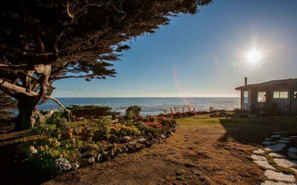 Pet Friendly Airbnb Monterey