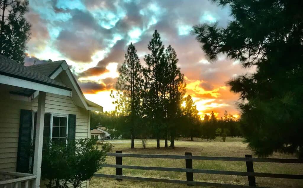 Rural Pet Friendly Cabin on the Idaho Washington Border