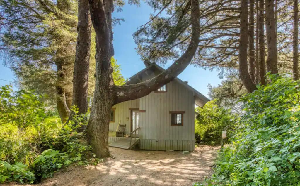 Ocean Shores Pet Friendly Secluded Beach Cabin With Sweeping Views